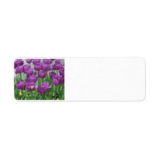 Etiqueta tulipanes púrpuras para siempre