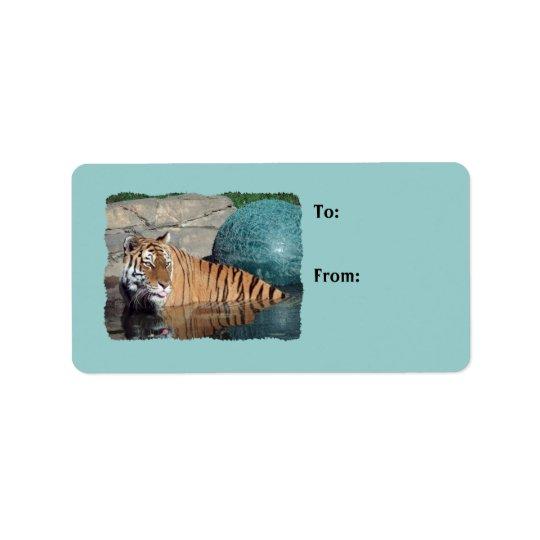 Etiquetas azules claras del regalo de la foto del etiqueta de dirección
