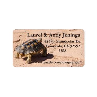 Etiquetas de dirección de la tortuga de desierto
