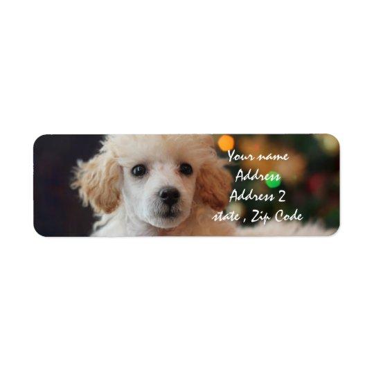 Etiquetas de dirección del perrito del caniche del