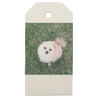 Etiquetas De Madera Para Regalos Perro lindo
