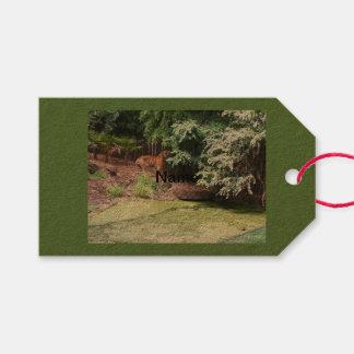 Etiquetas del bolso del tigre del parque zoológico