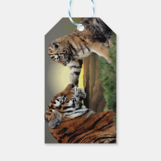 Etiquetas del tigre y del regalo de Cub