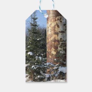 Etiquetas industriales al aire libre del regalo