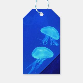 Etiquetas Para Regalos Acuario de Carolina del Norte de las medusas