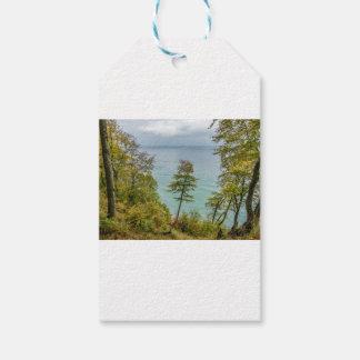 Etiquetas Para Regalos Bosque costero en la costa de mar Báltico