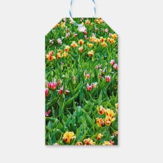 Etiquetas Para Regalos Campo con los tulipanes rosados y amarillos