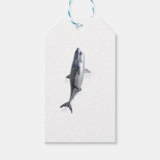 Etiquetas Para Regalos gran tiburón blanco que nada a la superficie