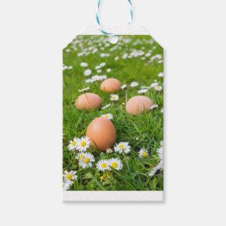 Etiquetas Para Regalos Huevos del pollo en hierba de la primavera con las