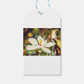 Etiquetas Para Regalos Magnolia magnífica de Mississippi