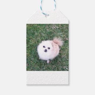Etiquetas Para Regalos Perro lindo