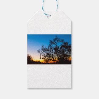 Etiquetas Para Regalos Salida del sol de la silueta del árbol de Palo