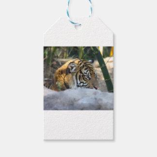 Etiquetas Para Regalos Tigre