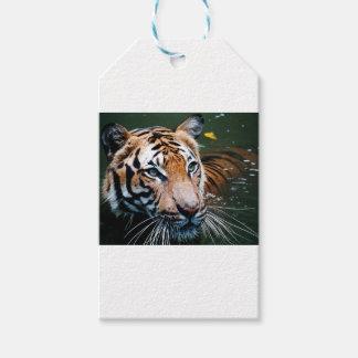 Etiquetas Para Regalos Tigre de los alquileres en agua