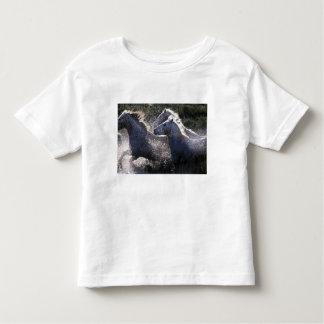 Europa, Francia, Ile del la Camargue. Camargue 4 Camiseta De Bebé