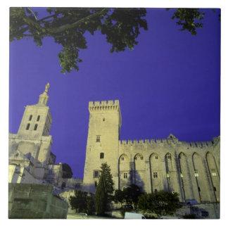 Europa, Francia, Provence, Aviñón. DES de Palais Azulejo Cuadrado Grande