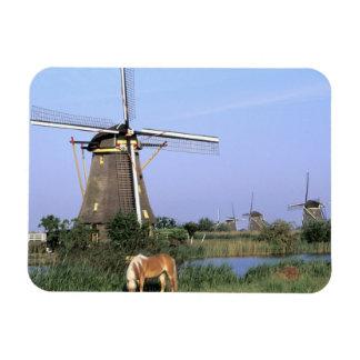 Europa, Países Bajos, Zuid Holanda, Kinderdijk. 2 Imán
