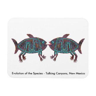 Evolución de la especie iman de vinilo