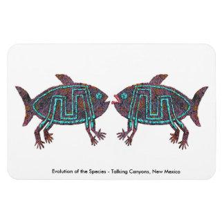 Evolución de la especie imanes