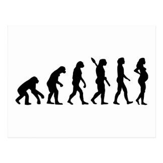 Evolución de la mujer embarazada postales
