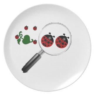 Exhibición de la mariquita plato