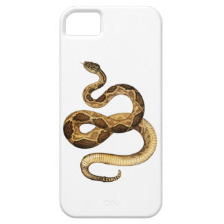 Expresiones Slithering Funda Para iPhone SE/5/5s