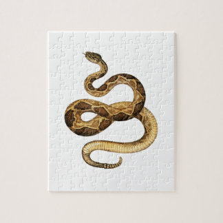 Expresiones Slithering Puzzle