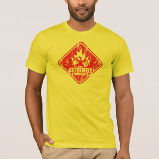 Extremely flammable dragon camiseta