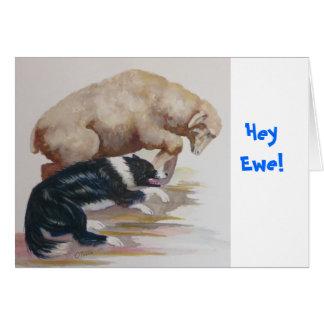 ¡Ey oveja Felicitacion