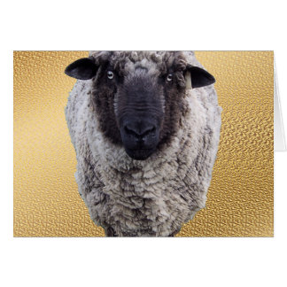 Ey oveja tarjeta de felicitación
