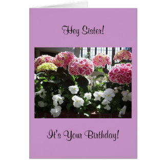 Ey tarjeta de cumpleaños de la hermana
