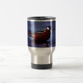 Falaropo rojo taza de café