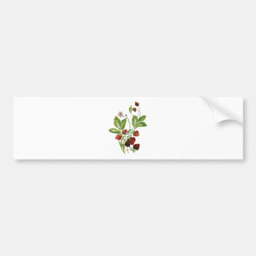 Falsas fresas frescas bordadas etiqueta de parachoque