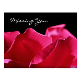 Faltándole pétalos color de rosa rosados postal