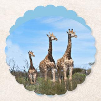 Familia de la jirafa posavasos de papel