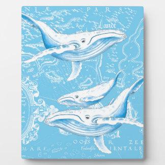 Familia de las ballenas azules placa expositora