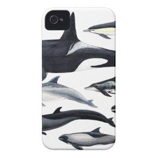 Familia de los delfines: orcas, delfines, marsopas carcasa para iPhone 4