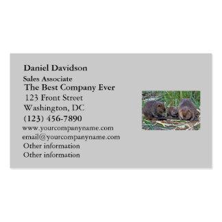 Familia del castor tarjetas de negocios