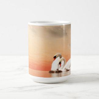 Familia del cisne taza de café