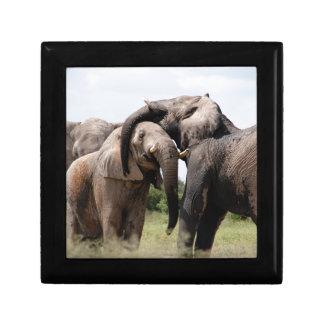 Familia del elefante de África Joyero
