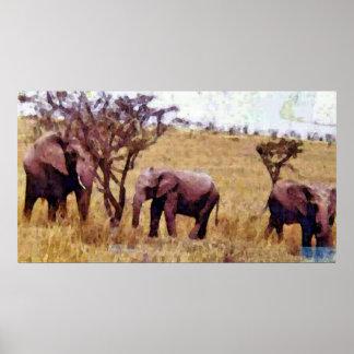 Familia del elefante posters