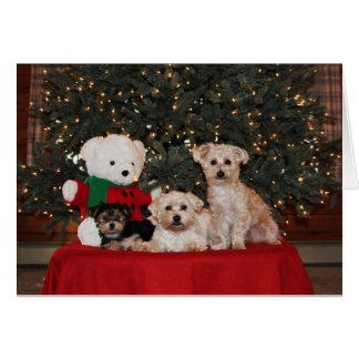 Familia del perrito tarjeta de felicitación
