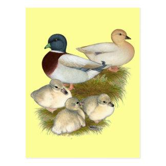 Familia en colores pastel del pato de la llamada postal