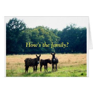 Familia linda del burro tarjeta
