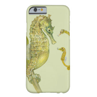 Familia pacífica del Seahorse Funda Barely There iPhone 6