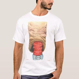 Feelin Soxy Camiseta