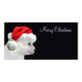 Felices Navidad Bichon Frise Tarjetas Personales