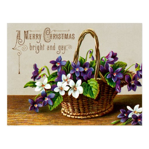 Felices Navidad brillantes y gay Tarjetas Postales