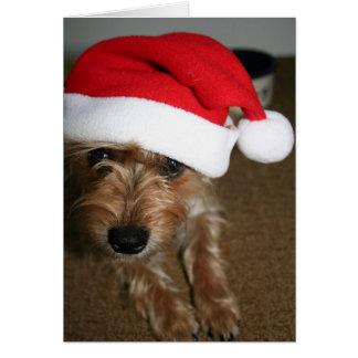 Felices Navidad (de Luna) Tarjeta De Felicitación