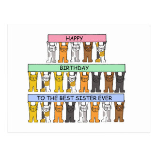 Feliz cumpleaños a la mejor hermana nunca postal